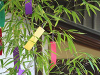 tanabata-1